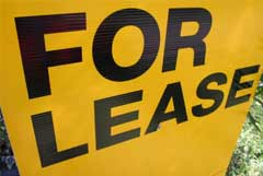 The Search for a Rental Property
